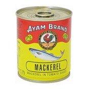 Mackerel In Tomato Sauce (鯖魚)