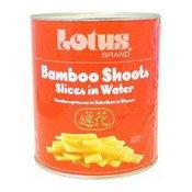 Bamboo Shoots (Slices) (大罐竹筍片)