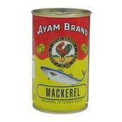 Mackerel In Tomato Sauce (茄汁魚)