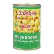 Champignons (玉鳳蘑菇)