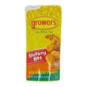 Savoury Hot Less Grease Peanuts (香脆花生)