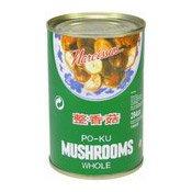 Po-Ku Mushrooms Whole (正香菇)