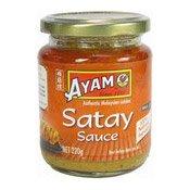 Satay Sauce (馬來沙爹醬)