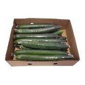 Cucumber (青瓜)