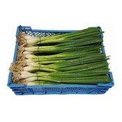 Spring Onion (Tray) (蔥仔(箱))
