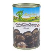Poku Mushrooms (Whole) (正香菇)