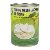 Young Green Jackfruit In Brine (青菠蘿蜜)