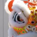 Wai Yee Hong Lion Dance