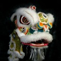 Traditional Lion Dance Costume