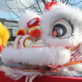 Cute Lion Dance