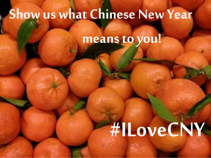 What does Chinese New Year mean to you?